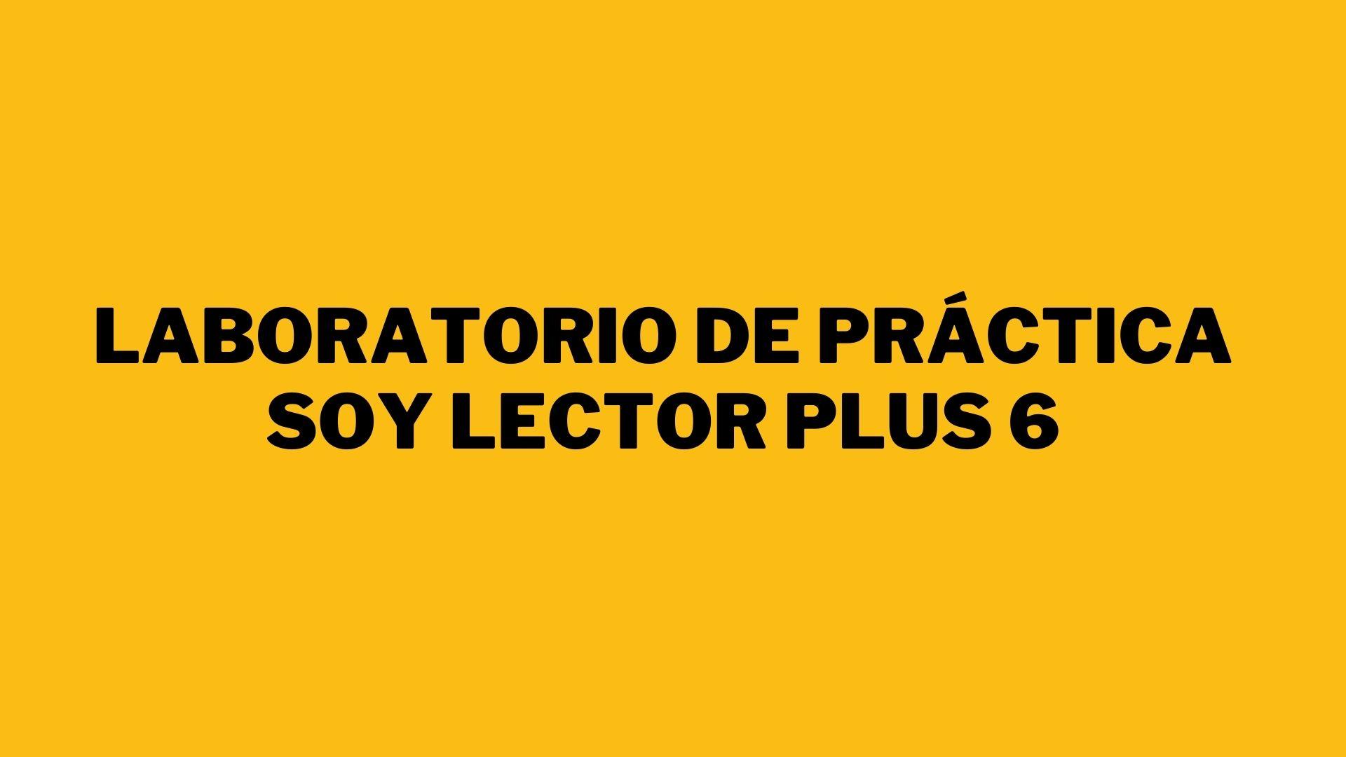 Laboratorio tipo PISA Soy Lector Plus 6